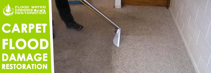 Carpet Flood Damage Restoration Paradise
