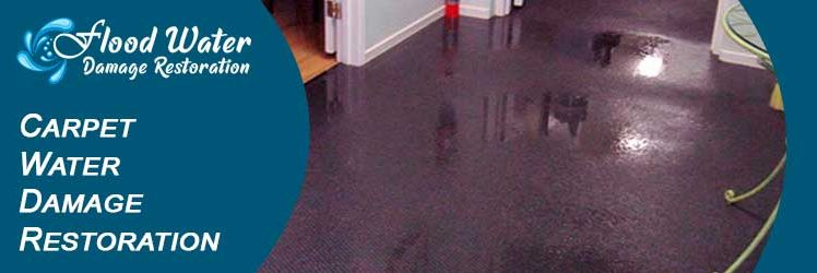 Some General Causes That Can Damage Your Carpets