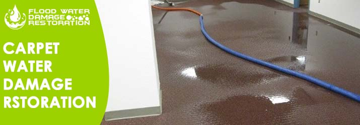 Carpet Water Damage Restoration Niagara Park
