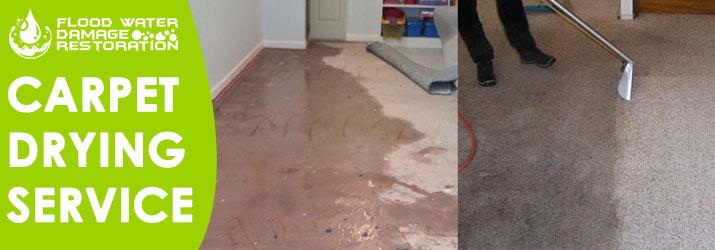 Carpet Water Drying Service Sydney