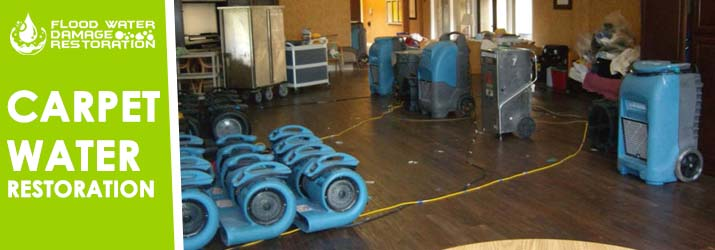 Carpet Water Restoration Brisbane