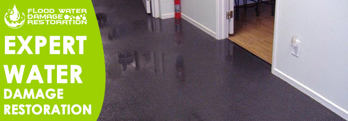 Expert Water Damage Restoration North Lake