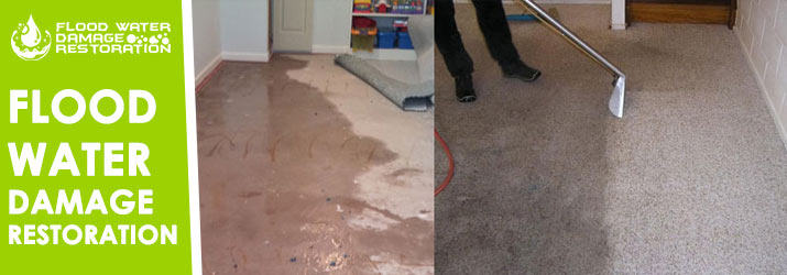 Flood Water Damage Restoration Palmerston