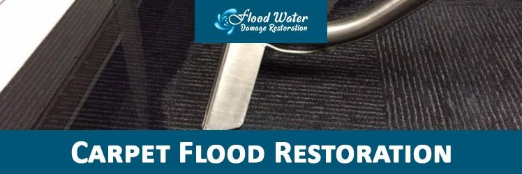 Golden Rules for Water Damaged Carpeting