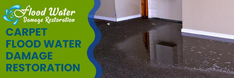 Carpet Flood Water Damage Restoration Services
