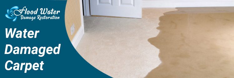 5 Ways to Dry Water Damaged Carpet