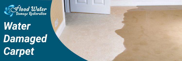 5 Ways to Dry Water Damaged Carpet