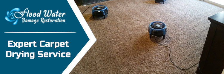 Carpet Drying Adelaide