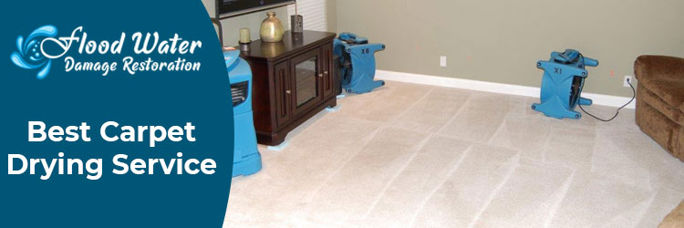 Carpet Drying Brisbane