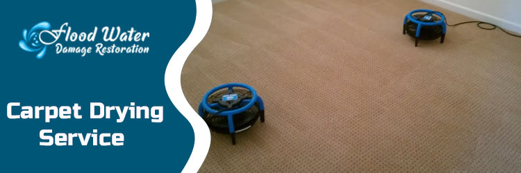Carpet Drying Canberra