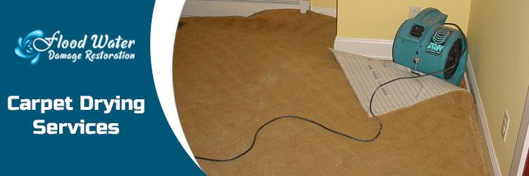 Carpet Drying Perth