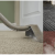 Reasons Why Hot Water Extraction Is Best For Carpets
